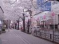 Nakano Street - 中野通り - panoramio.jpg