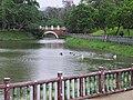 Nangang Park 南港公園 - panoramio (2).jpg