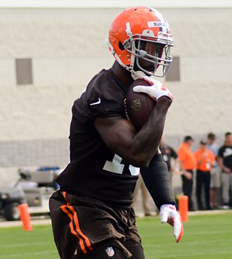 Nate Burleson - Burleson with the Browns in 2014