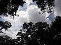 Nature20180824 122457.jpg