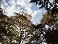 Nature - Natura (15749653015).jpg