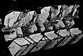 Navy band (5509272029).jpg
