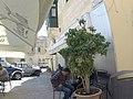 Naxxar, Malta - panoramio (61).jpg