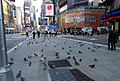New York, New York (2327070533).jpg