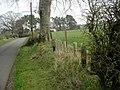 New hedge planting at East Linbank - geograph.org.uk - 402265.jpg