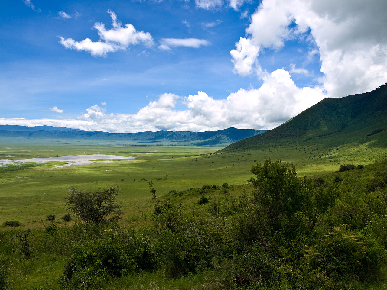 Kawah Ngorongoro, kaldera vulkanik terbesar di dunia yang tidak aktif dan utuh