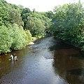 Nidd River - panoramio (3).jpg