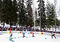 Nordic World Ski Championships 2017-02-26 (32414841844).jpg