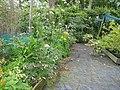 Nursery (17725788789).jpg