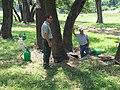 Oak Wilt Treatments on LBJ Ranch (64b4e948-e3f2-444c-ac62-01ae8dcf151f).jpg