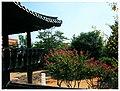 October Asia Daegu Corea - Master Asia Photography 2012 - panoramio (24).jpg