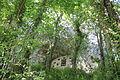 Ogof Bontnewydd Cave Sir Ddinbych 24.JPG