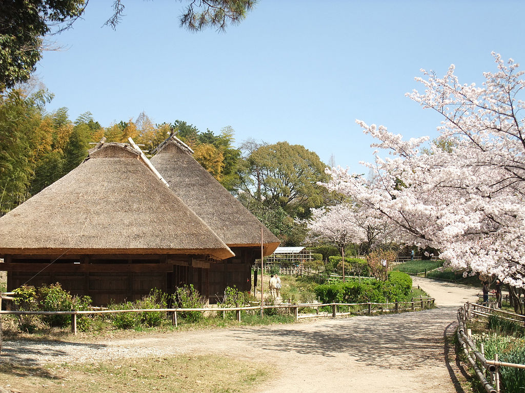 Old Japanese Farm House Museum Miyazaki