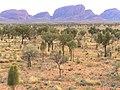 Olga Rocks, Australia, 2004 - panoramio.jpg