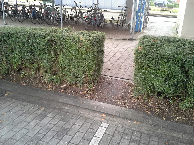 Desire path train station Asse Belgium
