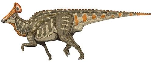 Är kol dating används för dinosaurier