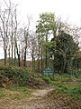 On the edge of Bacton Wood - geograph.org.uk - 1051620.jpg