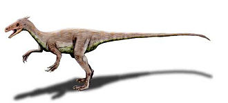 Ornitholestes - Life restoration of Ornitholestes