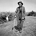 Ovčar Gvardjančič iz Podgrada 1955.jpg