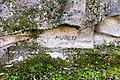Père-Lachaise - Division 51 - Tirard 12.jpg