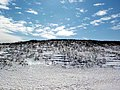 PEI National Park, Covehead (49636274686).jpg