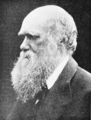PSM V74 D342 Charles Darwin.png