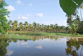 Maniyur Grama Panchayath in Kerala, India