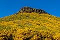 Paisaje cerca del pico de Arieiro, Madeira, Portugal, 2019-05-30, DD 124.jpg