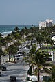 Palm Trees Line Deerfield Beach Photo D Ramey Logan.jpg