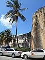 Palm tree & fortress (14703959582).jpg