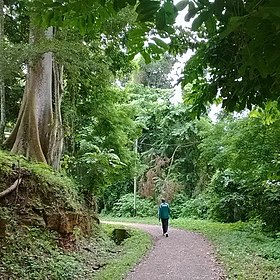 Parcours Vita de Yaoundé
