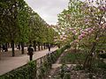 Park in Paris (15234694001).jpg