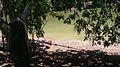 Parque Temático Hacienda Nápoles 27.jpg