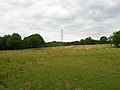 Pasture and Pylons - geograph.org.uk - 226465.jpg