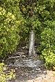Path (6117870265).jpg