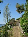 Path in the garden on St Michael's Mount - geograph.org.uk - 1389081.jpg