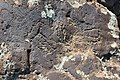 Petroglyphs from Ukhtasar 15092019 (25).jpg