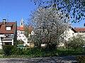 Pfullendorf Blick vom Stadtsee.jpg