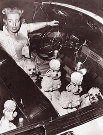 Phyllis Morris - Phyllis Morris in 1953 with her pink poodle lamps and pink-dyed poodles