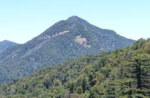 Ventana Wilderness - Pico Blanco