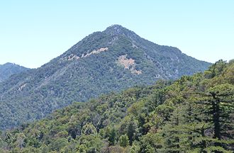 Ventana Wilderness - Pico Blanco
