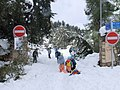 PikiWiki Israel 34013 Entrance to Jerusalem forest in the snow.JPG