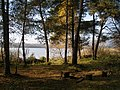 Place for a picnic - panoramio.jpg