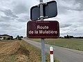 Plaque route Mulatière St Genis Menthon 1.jpg