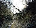 Plateau van Duisburg, landschap (Leefdaal - biologische aspecten v.d.erosie) - 354847 - onroerenderfgoed.jpg