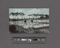 Plowing rice feld (i.e., field) near Manila, P.I (NYPL Hades-2359624-4044389).tiff