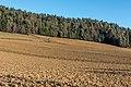 Poggersdorf Linsenberg Landschaft mit Fluren 11012019 5938 5936.jpg