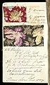 Printer's Sample Book, No. 19 Wood Colors Nov. 1882, 1882 (CH 18575281-29).jpg