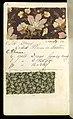 Printer's Sample Book, No. 19 Wood Colors Nov. 1882, 1882 (CH 18575281-4).jpg