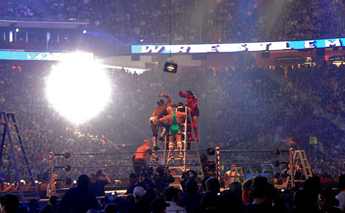 A WWE Money in the Bank ladder match, 2009 Professional wrestling ladder match.jpg